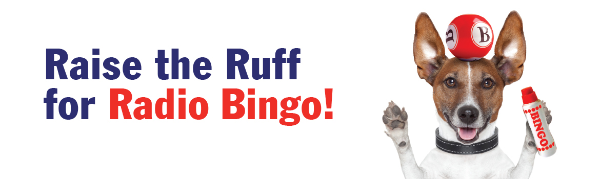 Saint John SPCA Animal Rescue Bingo!